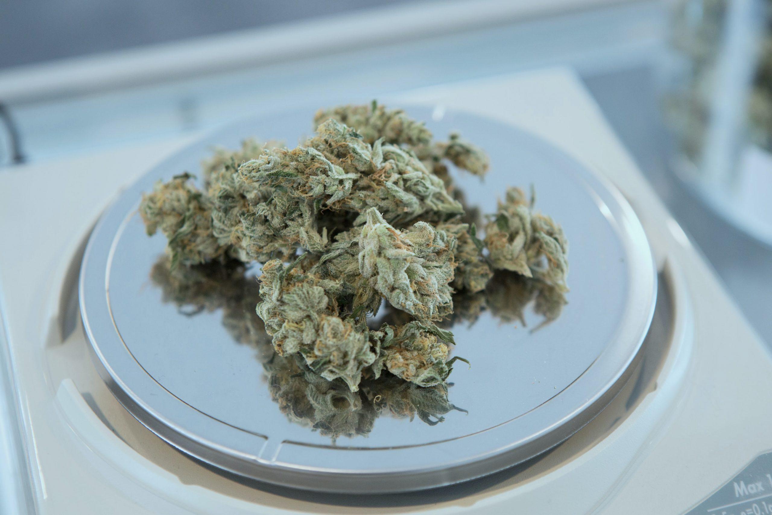 cannabis covid-19 treatment